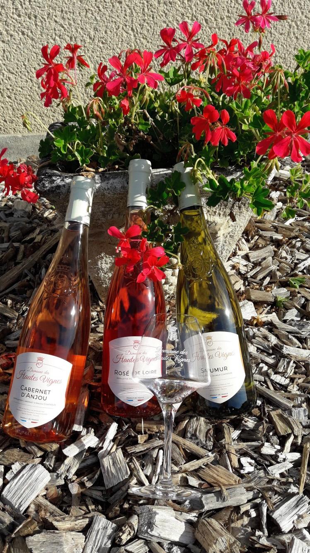The rosés of summer